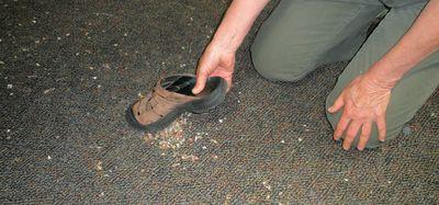 Shoe vacuum
